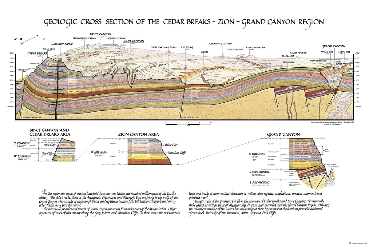 Geologic Cross Section Poster Zion Natl Park Forever Project