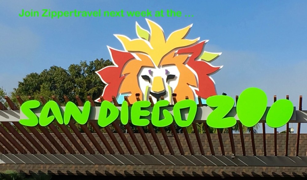 San Diego Zoo entrance postcard