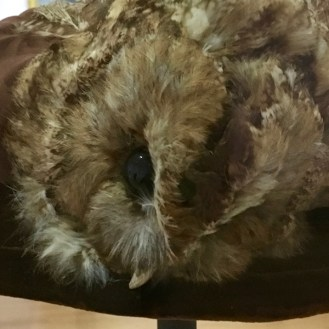 taxidermied owl hat detail Legion Honor hats San Francisco