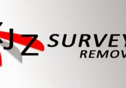 XJZ Survey Remover Key