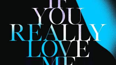 MP3: David Guetta — If You Really Love Me (How Will I Know) (MistaJam Remix)