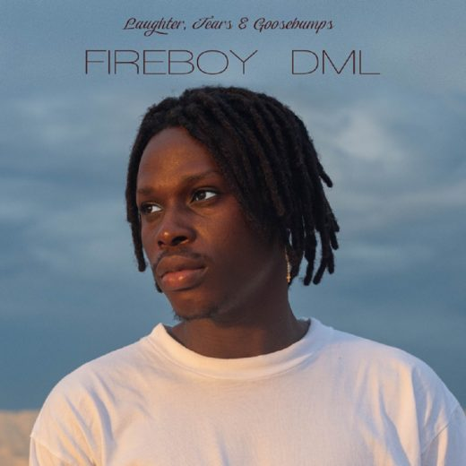 Fireboy DML Laughter Tears Goosebumps