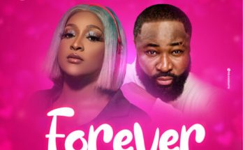 DJ Barbie Harrysong Forever