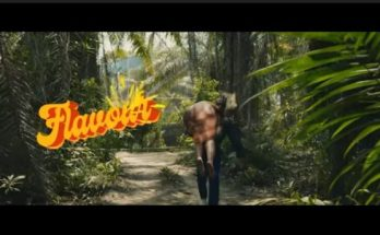 Flavour - Looking Nyash Video