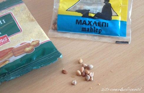 Mahlep - Samen der Felsenkirsche