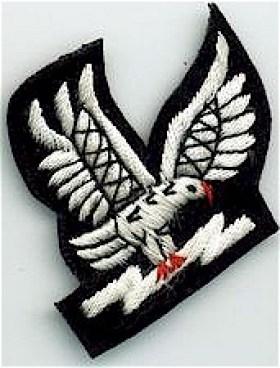 Air Traffic Controller IAF badges