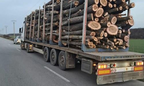 Furt de material lemnos în valoare de 15.000 de lei, ridicat de politisti