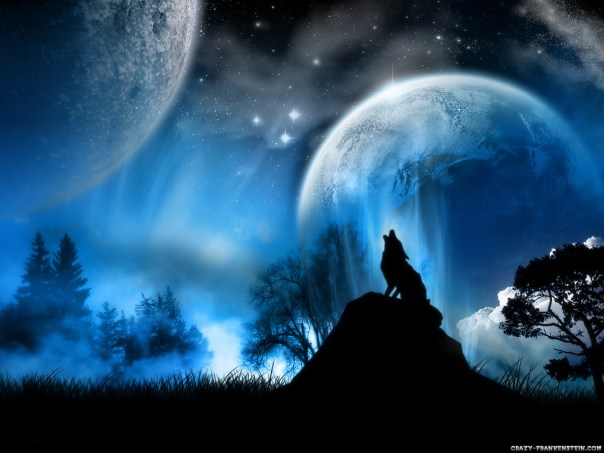 wolf_wallpaper_fire_and_ice_the_wolf_pack_wallpaper-normal