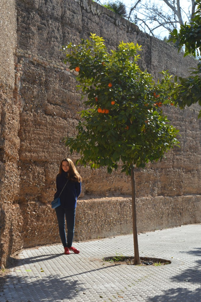 Sevilja je tipični španjolski grad