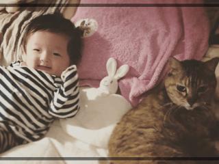 中村獅童,子供,息子,ネコ,写真