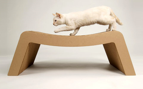 cardboard-for-cats-21