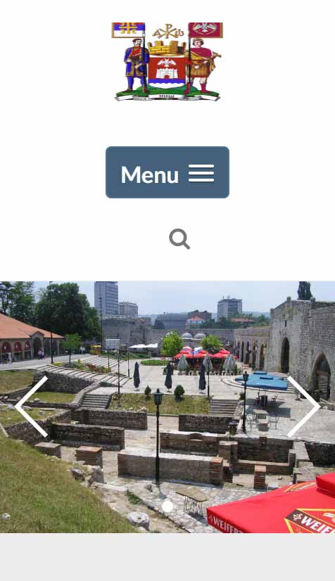 Izrada web-sajtova Niš Creation of professional websites