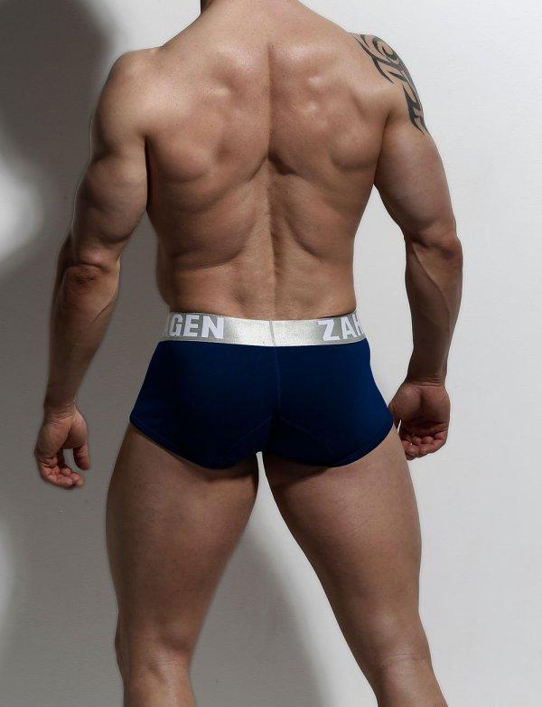 Navy Trunks Organic Underwear By ZLCOPENHAGEN
