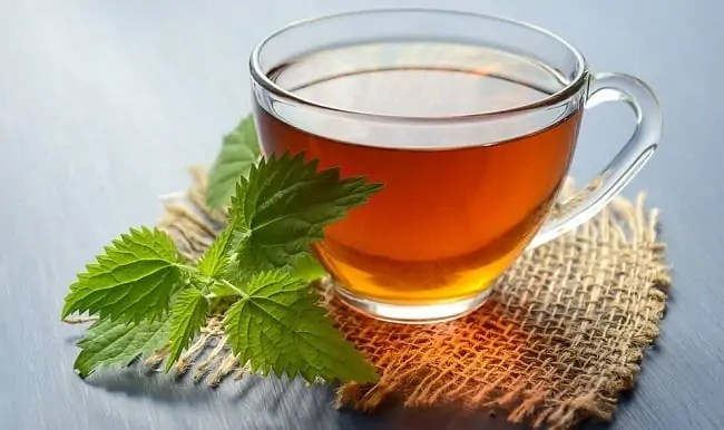 čaj iz kopriv
