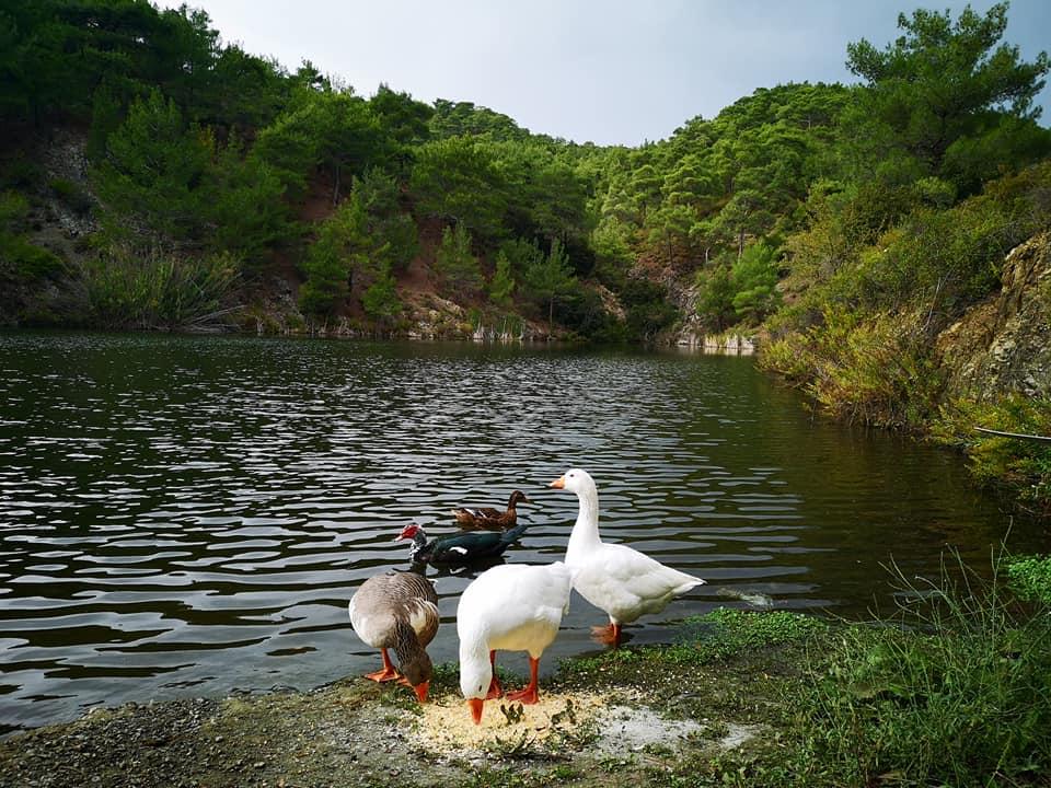 טיול בקפריסין. צילם: אוריה כספי
