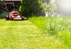 Lawnmower_and_grass Diligence: Make Hay While the Sun Shines