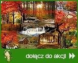 Smaczna Jesień