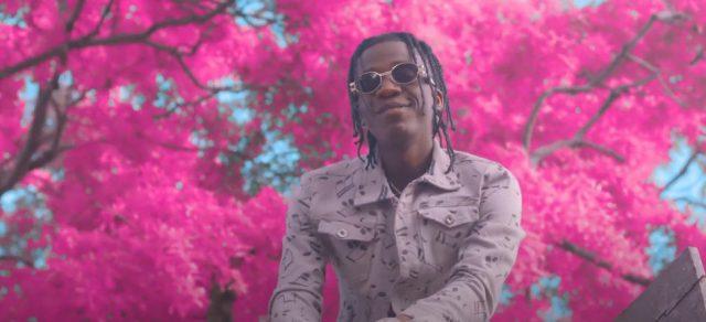 "VIDEO: Bow Chase & Mohsin Malik ft. Narjeh & Karris Wafikansa – ""Hmmm"""