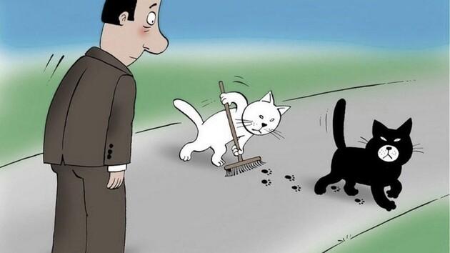 Чорна кішка децентралізації