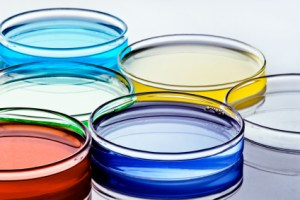 colorful solutions inside a set of petri dishes