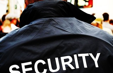 VIP Security: Who Gets It and Who Decides It