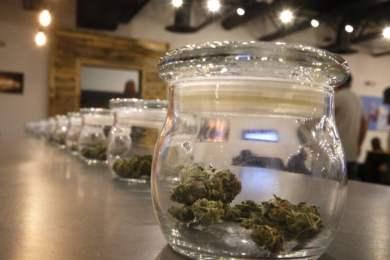 Storing Marijuana for Long Term In 7 Easy Steps