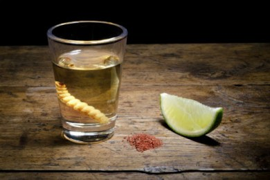 Where to Find the Best Quality Mezcal Near You