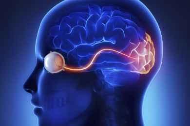 Modern Trends In Neurology