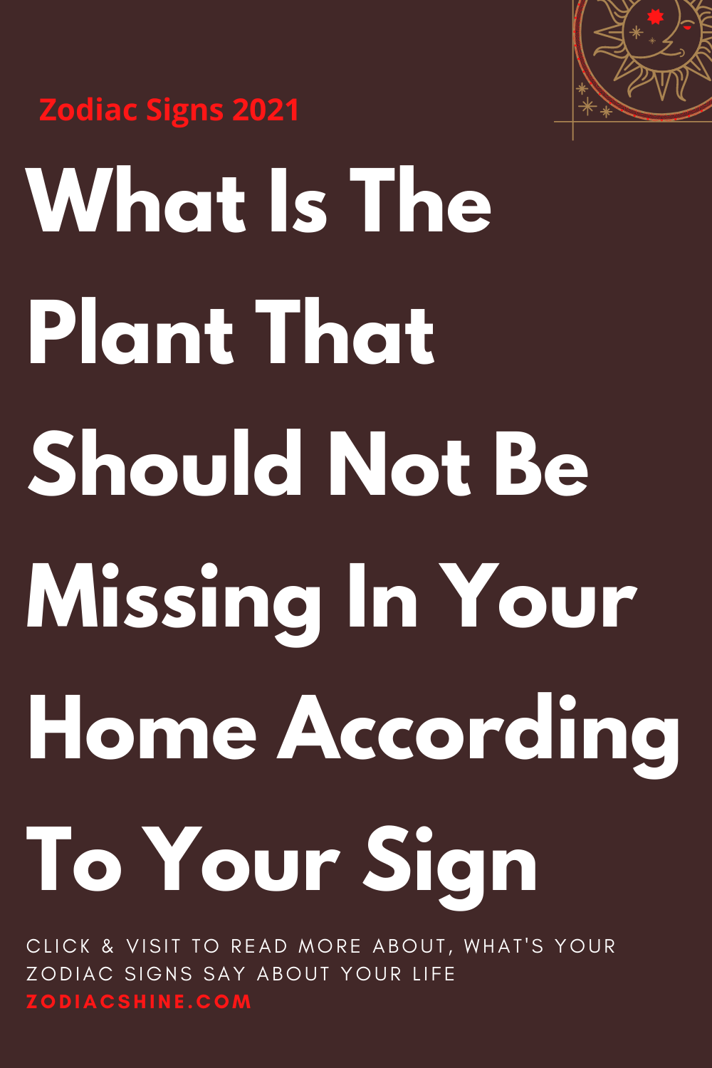 What Is The Plant That Should Not Be Missing In Your Home According To Your Sign