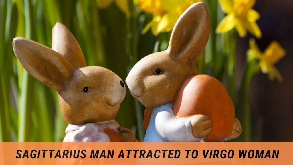Sagittarius Man Attracted To Virgo woman