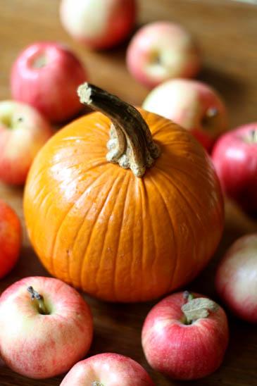 Apples and a Pumpkin | ZoëBakes | Photo by Zoë François