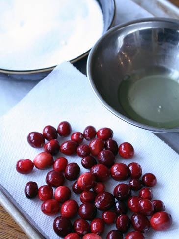 Fresh cranberries | ZoëBakes | Photo by Zoë François