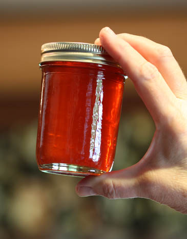 A jar of plum jelly, made by Barb Schaller