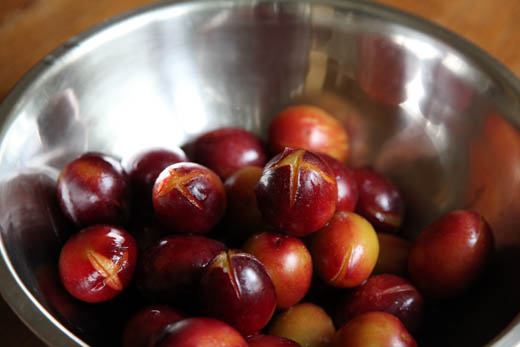 Bowl of blanched plums | ZoëBakes | Photo by Zoë François