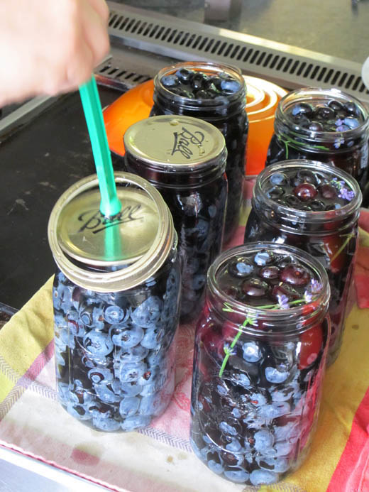 canning blueberries with Suvir Saran at Masala Farm   photo by Zoë François