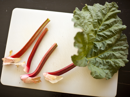 Fresh cut rhubarb   ZoëBakes   Photo by Zoë François