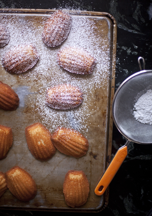 Dusting honey madeleines with sugar | ZoëBakes | Photo by Zoë François