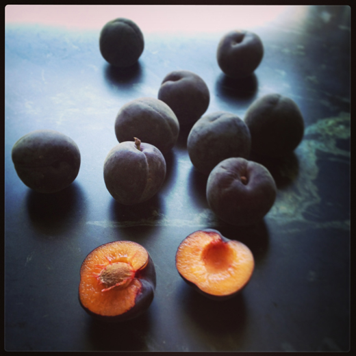 Black Velvet Apricots | ZoëBakes | Photo by Zoë François