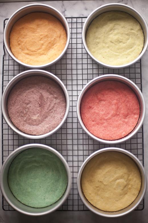 Colorful Cakes in cake pans | ZoëBakes | Zoë François