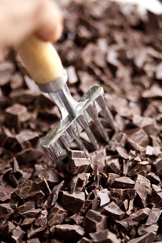 Brownies ZB 02