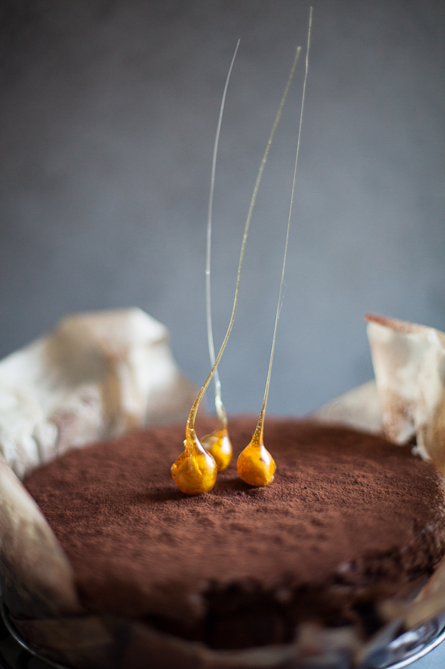 Flourless Chocolate Hazelnut Cake | ZoeBakes Photo by Zoë François
