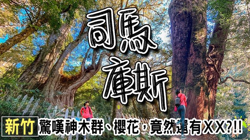 司馬庫斯登山步道  | 住宿 | 交通 | 天氣 | 櫻花 & 楓葉 季節