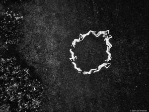Circle ©2017 Zoe Wiseman