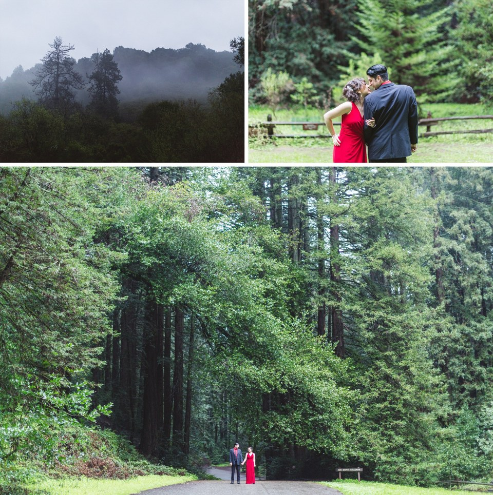 expansive wide angle of redwood forest with engaged couple