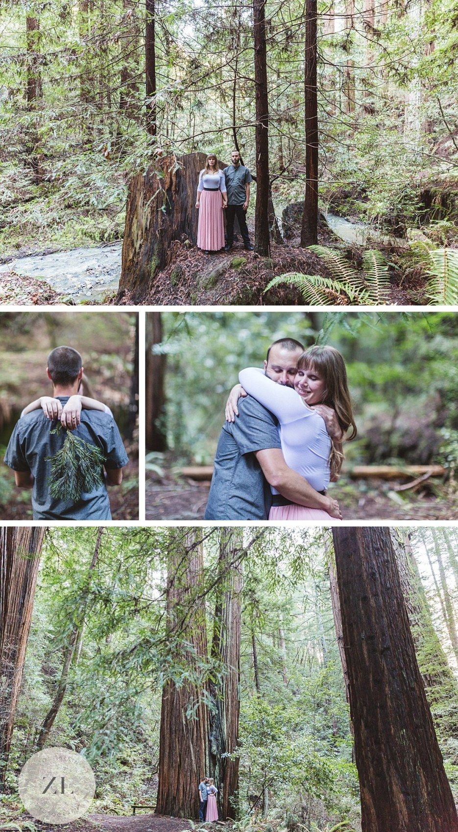 redwood forest engagement photography shoot