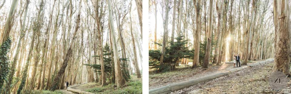 forest vibes engagement photos by zoe larkin photography, san francisco