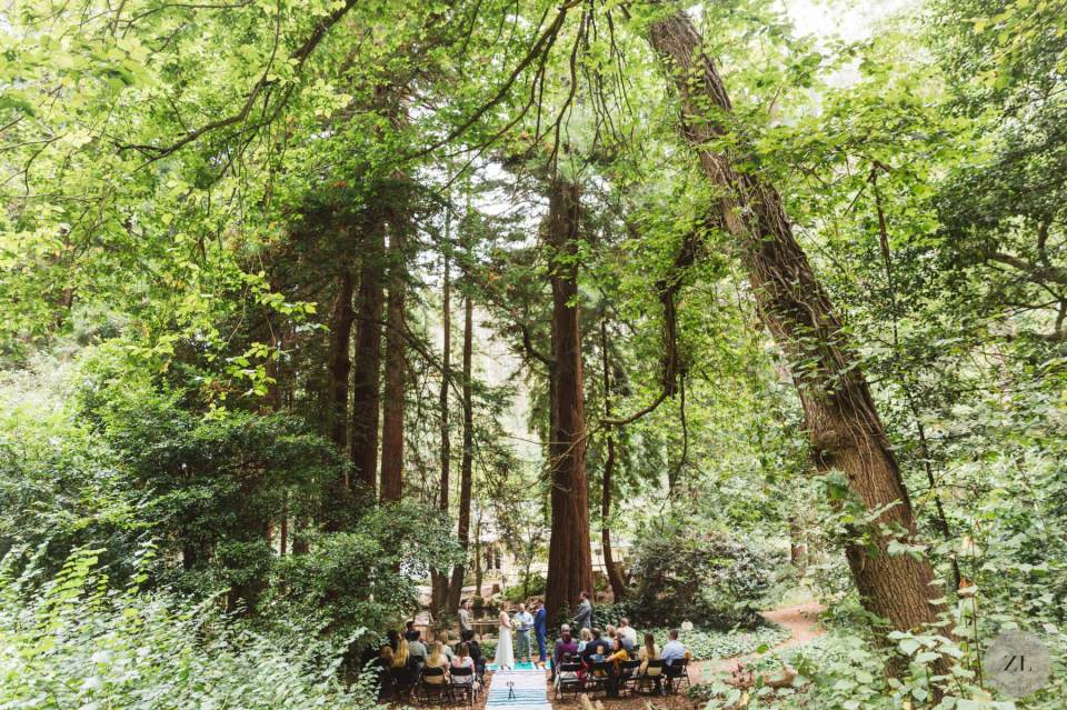 wide epic photo of stern grove wedding ceremony by Zoe Larkin Photography