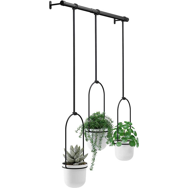 Triflora Hanging Planter