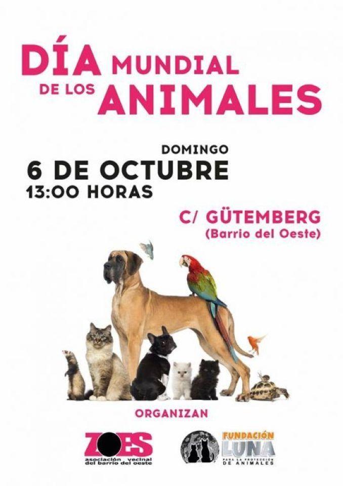 foto cartel dia internacinal de los animales