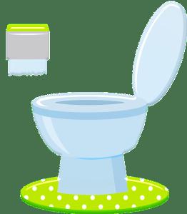 Recette nettoyant WC et entretien